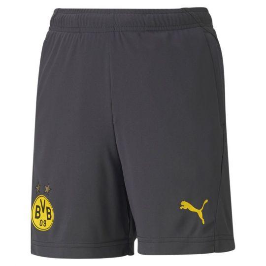 PUMA Borussia Dortmund Trainingsbroekje 2020-2021 Kids Asfalt Geel