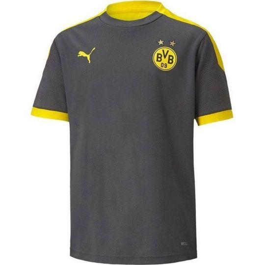 PUMA Borussia Dortmund Trainingsshirt 2020-2021 Asfalt Geel